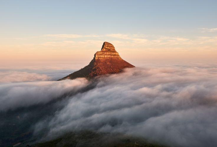 Lion's Head - Afrique du sud
