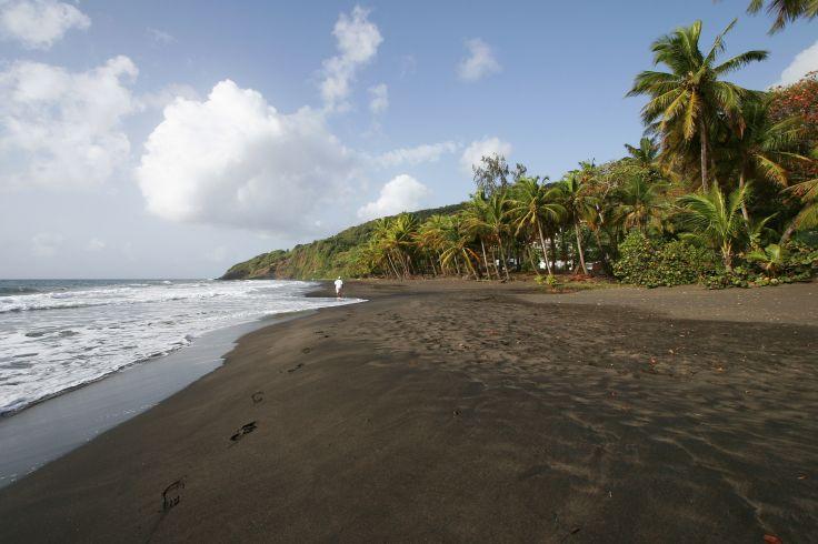Plage de Grande-Anse - Guadeloupe