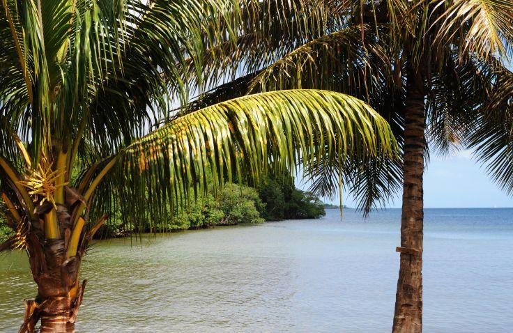 Sainte Rose - Guadeloupe