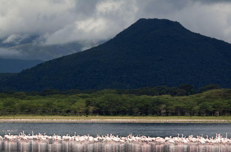 plus grand site de rencontre au Kenya