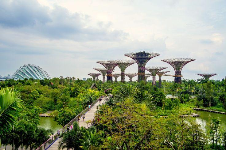 Réserver une table Mikuni, Singapour sur TripAdvisor : consultez 503 avis sur Mikuni, noté 4 sur 5 sur TripAdvisor et classé #186 sur 12 354 restaurants à.